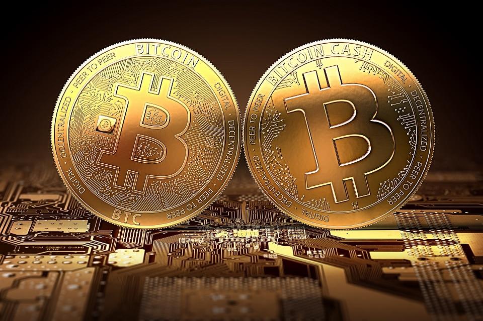 Estadísticas de Bitcoin y Bitcoin Cash: dos criptoactivos que crecen en paralelo