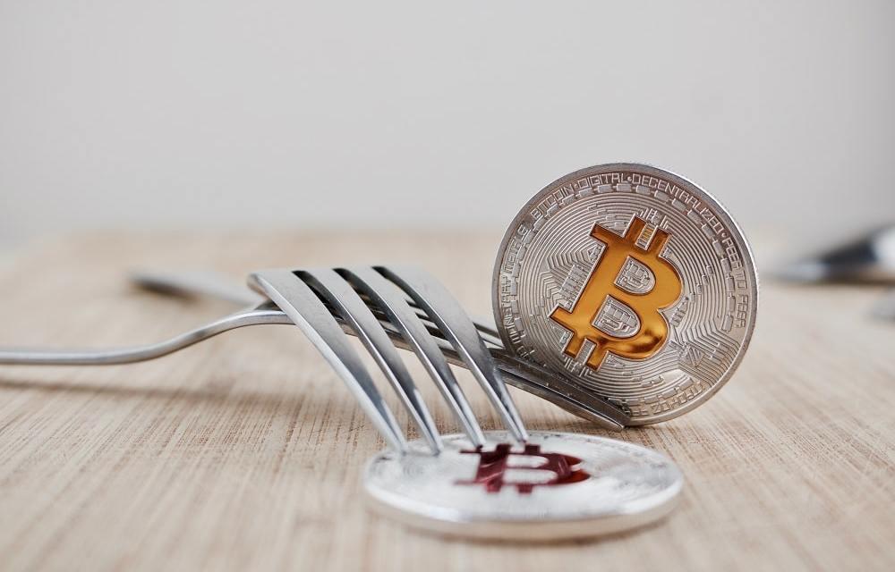 Así enfrenta la comunidad de Bitcoin Cash la posible bifurcación de su red