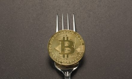 Carteras para Bitcoin Cash toman posiciones diversas ante la inminente bifurcación