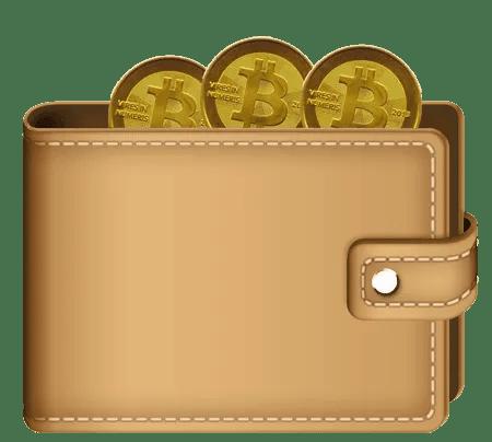 Cos'è un Wallet. Portafogli per  Criptovalute 66 Bitcoinwalletpurse