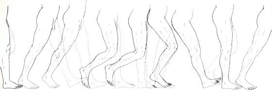 Progresión del acto de caminar