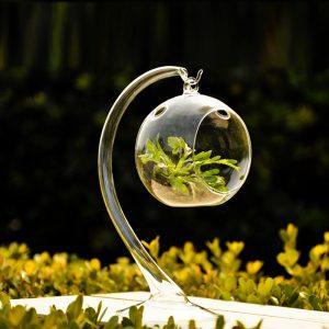 Cristales medio ambiente