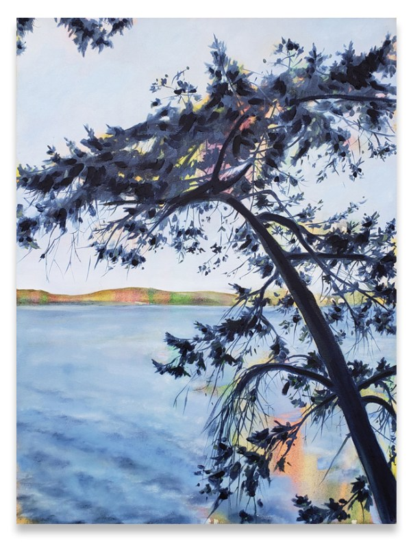 Christopher Friesen, View lot, landscape, gulf islands