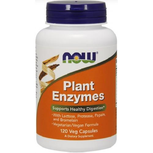 enzime digestive rezultatele pierderii în greutate dieta de 13 zile daneza