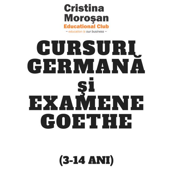 Cursuri Germana si Examene Goethe