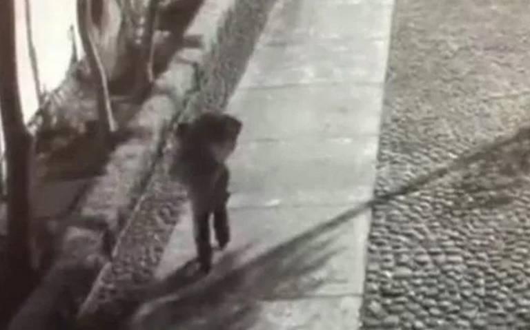 Momento exacto en que abandonan el cuerpo de una menor en Tlatelolco (VIDEO)