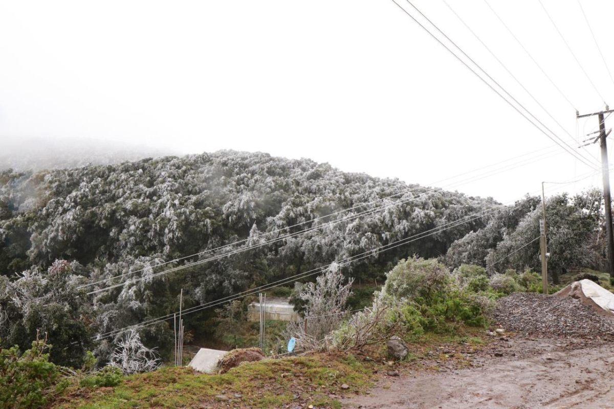 Mantienen suspensión de clases para jueves en Hidalgo por bajas temperaturas