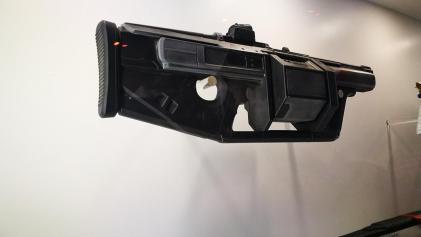 Destiny 2 guns (2)