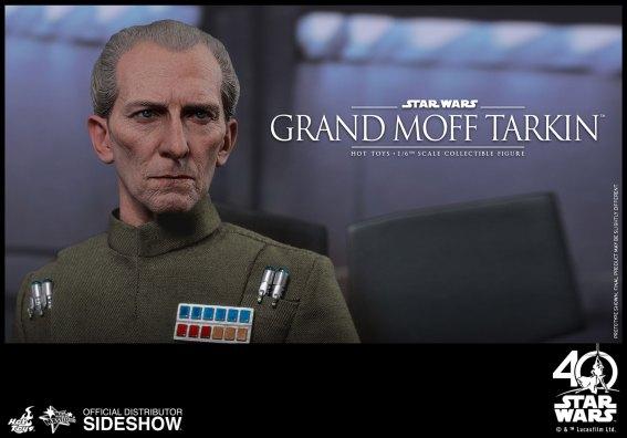 Star Wars HT Tarkin (13)