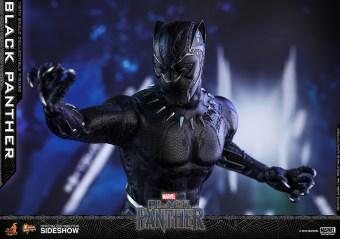 Black Panther (26)