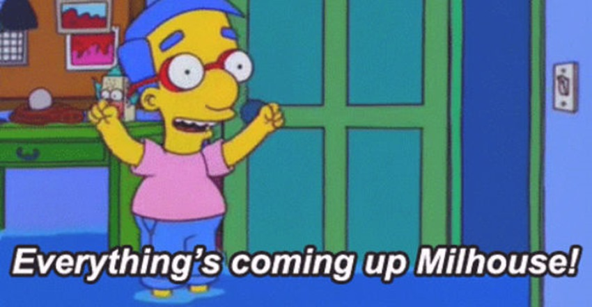 everythings-coming-up-milhouse