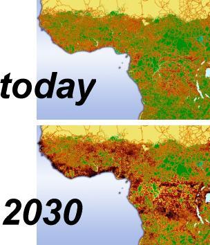 Grasp africa