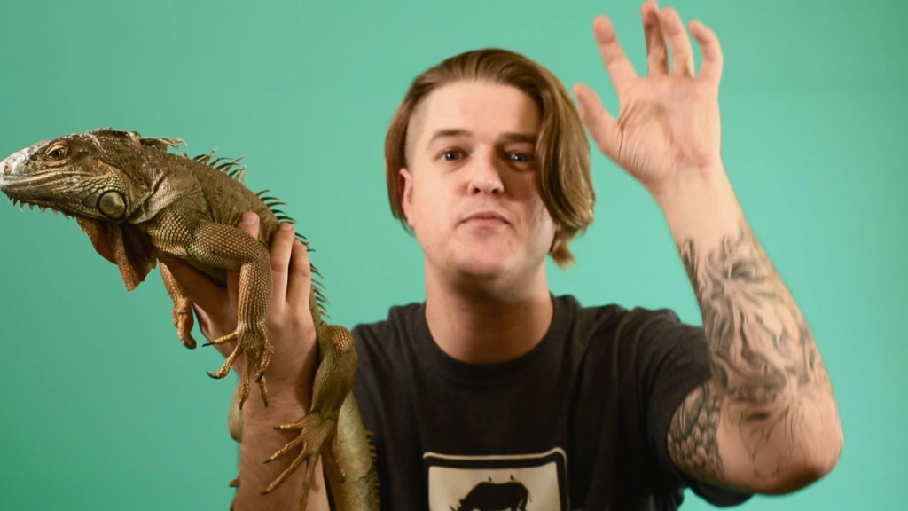 HAVE YOU EVER MET AN IGUANA
