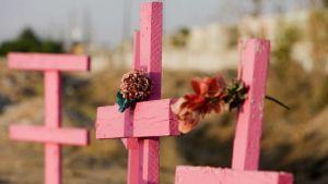 En lo que va del año México registra 495 feminicidios