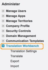 How to Enable Salesforce Translation Workbench