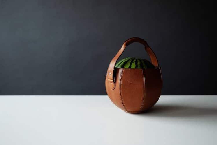 specijalno-dizajnirana-torba-za-lubenica-idealna-za-leto-vo-makedonija-foto06.jpg