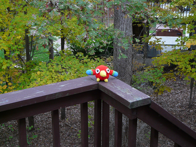 Perry the amigurumi crochet parrot prepares to take flight