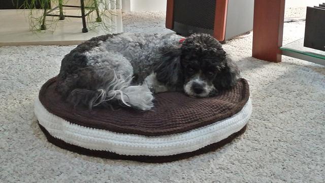 oreo crochet pet bed, crochetbug, crochet circles, oreos, crochet dog bed