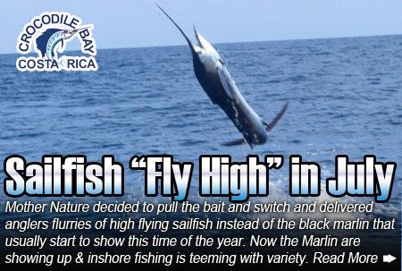 Sailfiish Fly High In July