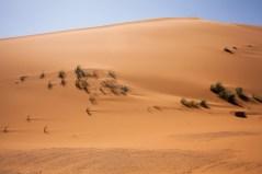 Morocco_Apr15__by_kingmouf-252