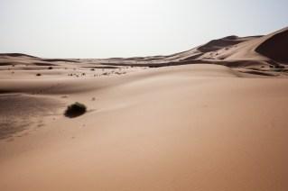 Morocco_Apr15__by_kingmouf-339