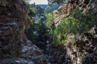 The deeper you get to the gorge the more wild and interesting it becomes