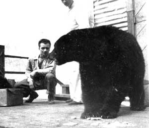 Mon père avec un ours noir dans l'ouest canadien il y a une soixante d'années