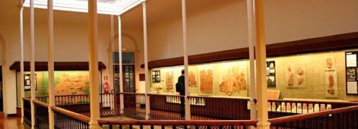 museo-canario
