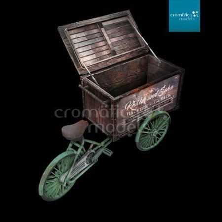CM-35002 Delivery Tricycle with cargo box
