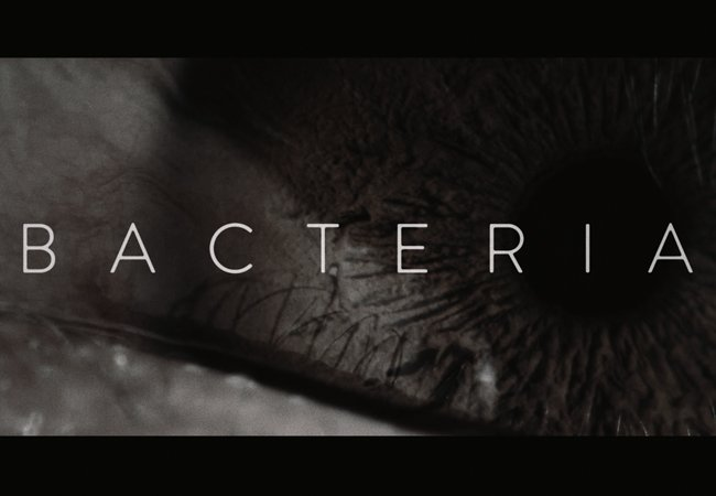 Bacteria :: Opening