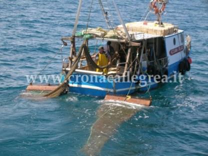 Perplessità da parte dei pescatori