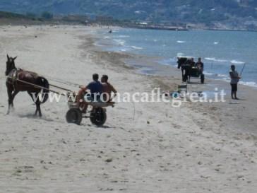 Cavalli allenati per corse clandestine sulle spiagge di Cuma e Torre del Greco