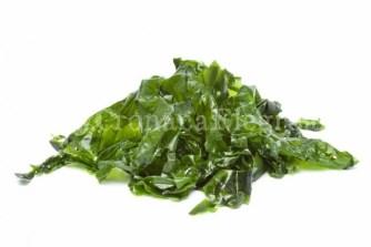 algas-kelp-farmacia-alomar