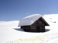 DSC01238 Pasquetta nella la neve all'alpe di Siuse Magazine Turismo
