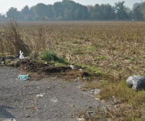 A Ossona il taglio dell'erba fa risaltare la spazzatura