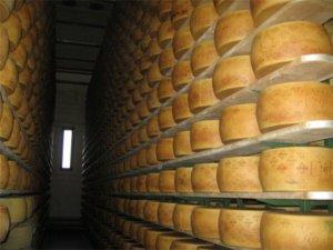 TTIP news. Il Grana Padano dop che fine farà? Cucina Economia Lifestyle Magazine Prima Pagina