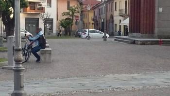 20180504_194959-350x197 Piazza Litta. Se sono rose (di maggio) fioriranno... Piazza Litta Prima Pagina