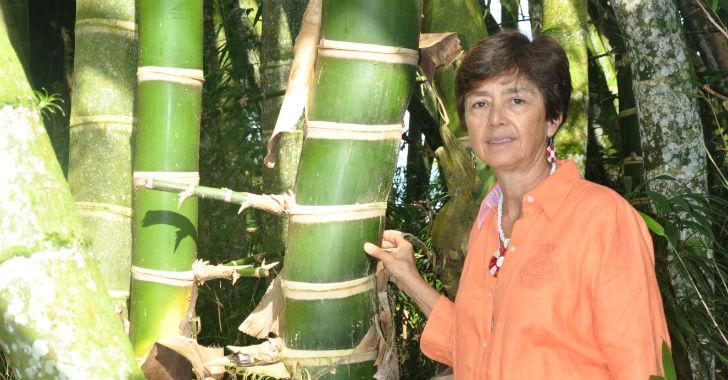 Ximena Londoño y su colección de bambúes más grande de Colombia
