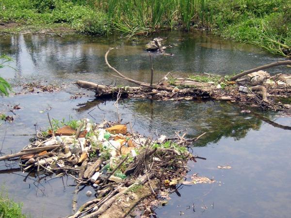 El 85% de aguas de Jalisco están contaminadas | La Crónica de Hoy - Jalisco
