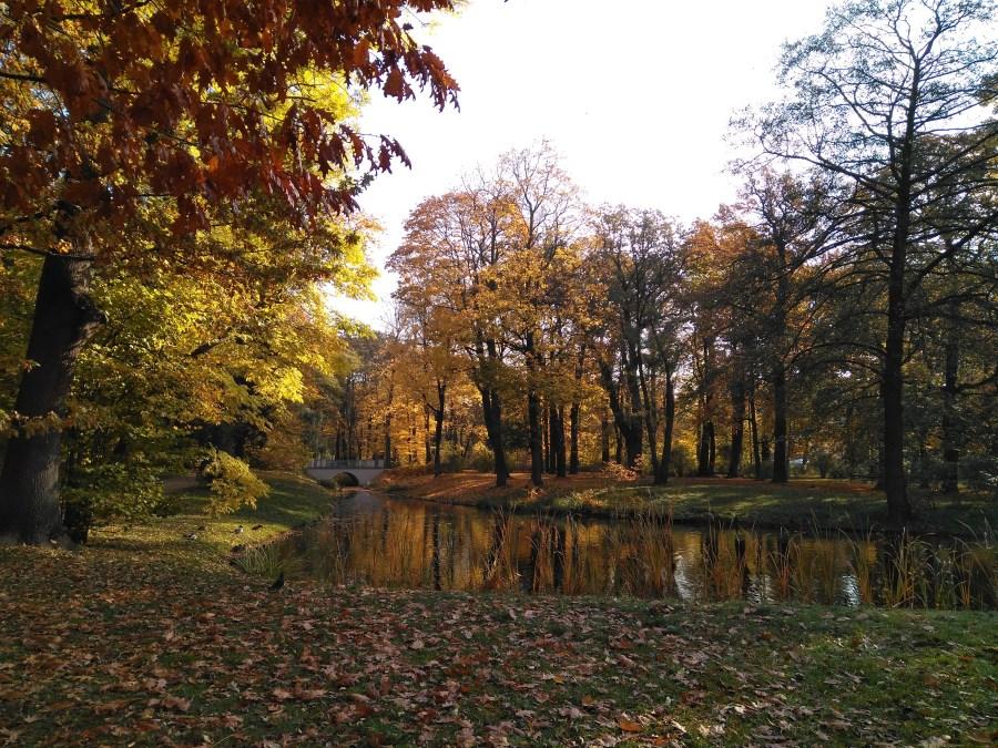 Qué ver en Varsovia. Parque Lazienki..