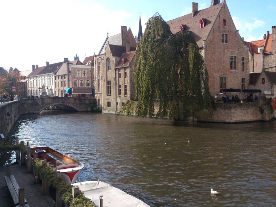 Preciosos canales de la ciudad.