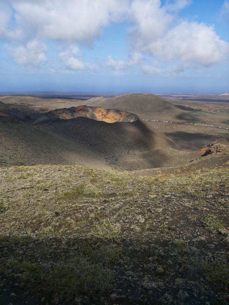 Flora del Timanfaya y cráter al fondo.