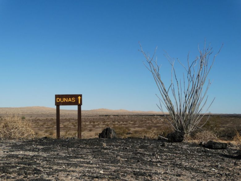PINACATE02