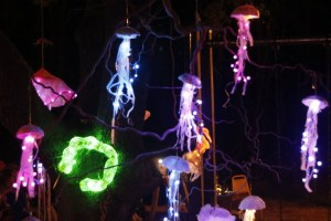 Lantern Fest Admission Only