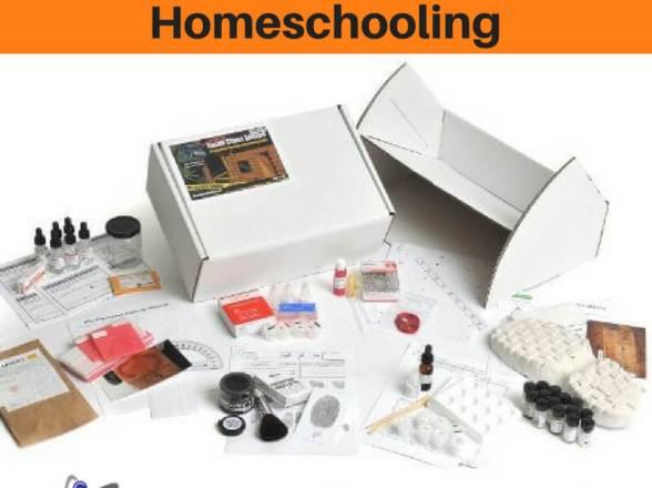 Rigorous Science in Homeschooling
