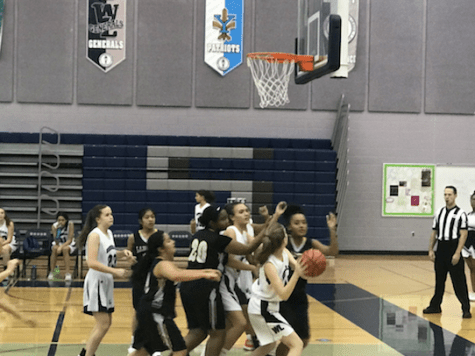 Freshman girls basketball shut down Wakefield