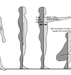 crossfit planes of the body movement of the body diagram [ 1957 x 1135 Pixel ]
