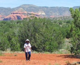 mystical nature, shamanic journey, outdoor seminar, power animals, ceremony, vision circle, Sedona spiritual, retreat