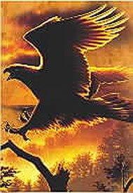 eagle_fire