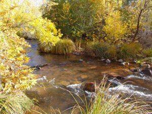 Oak Creek, mystic nature, shamanic journey